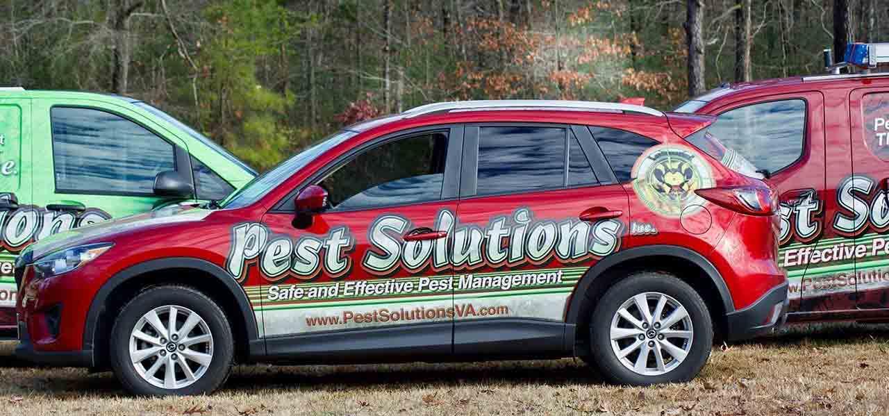 Pest Control | Serving Richmond VA to Fredericksburg VA