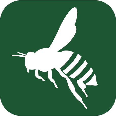 bee removal company