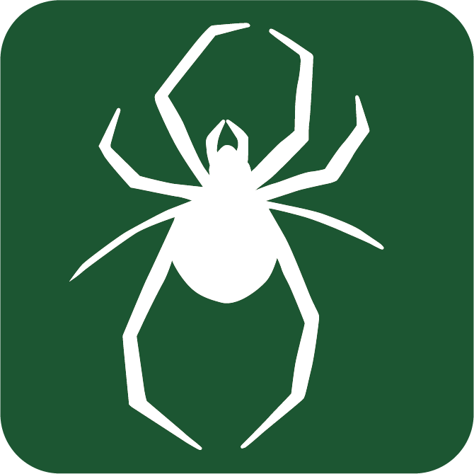 spider removal company