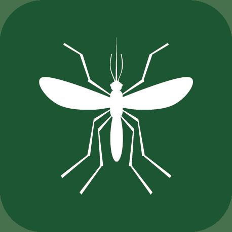 mosquito removal company